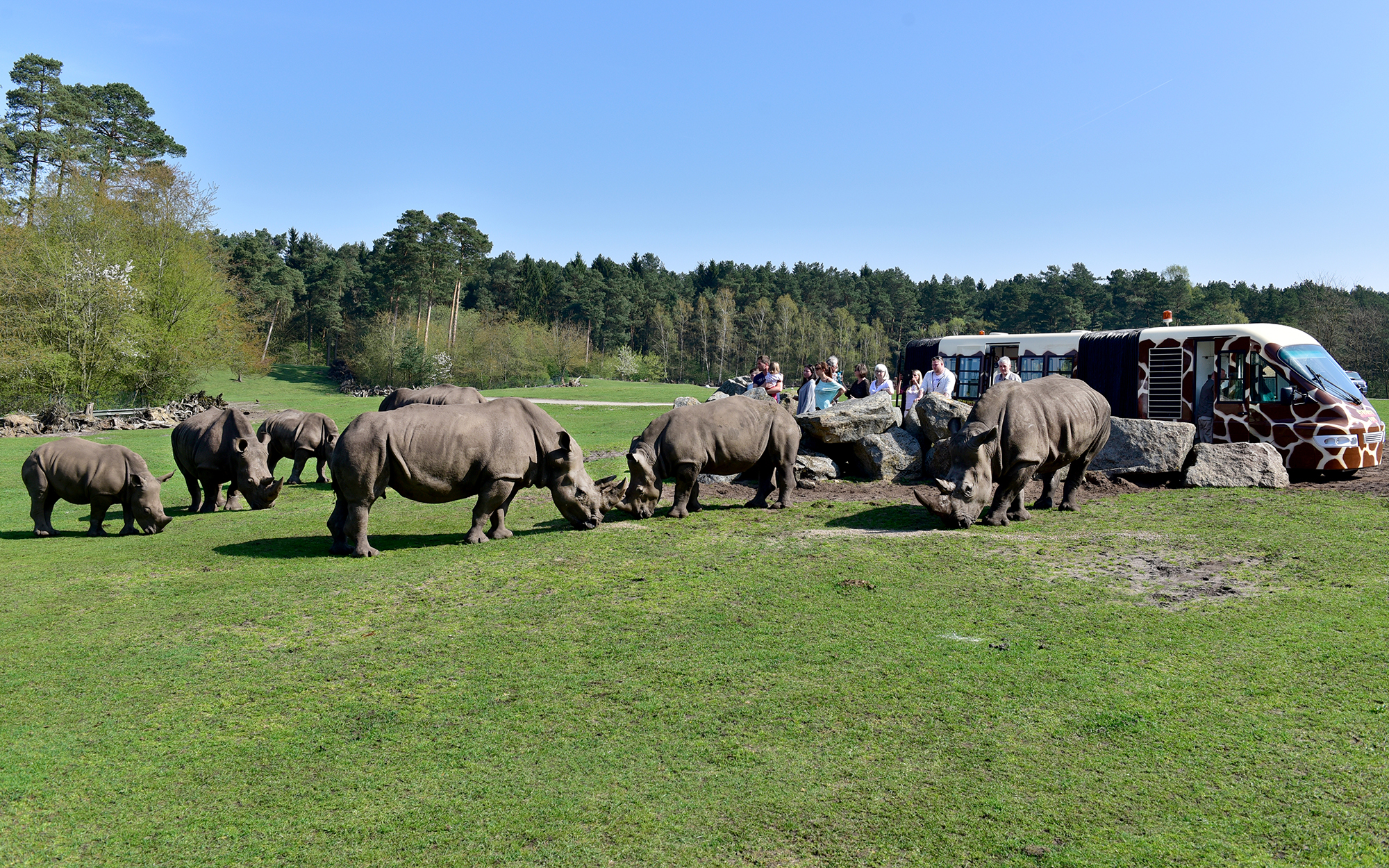 Der Safari-Express im Serengeti-Park