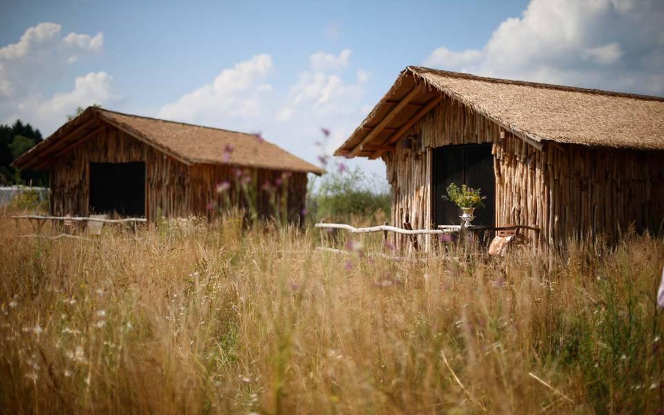 Schlafen wie ein Löwenkind - Urlaub in der Masai Mara Lodge