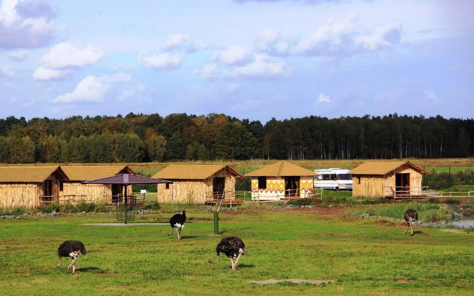 Wohnmobil Stellplatz in der Masai-Mara Anlage