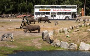 Betriebsausflüge und Sommerfeste im Serengeti-Park