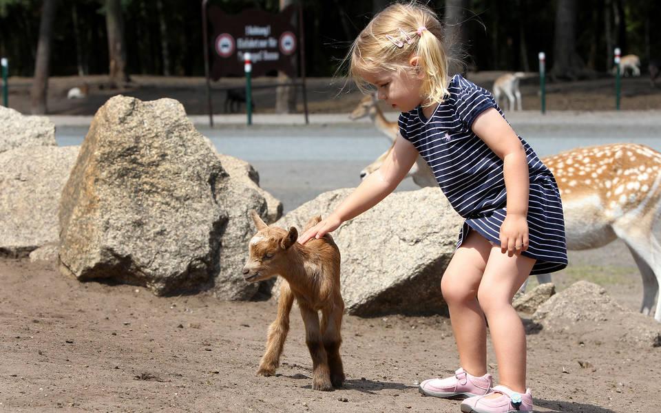 Angebote für Kinder - Serengeti-Park