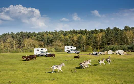 Ranger-Lodges im Serengeti-Park