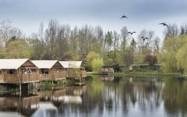 Zelt-Lodges am Ufer des Victoria-Sees