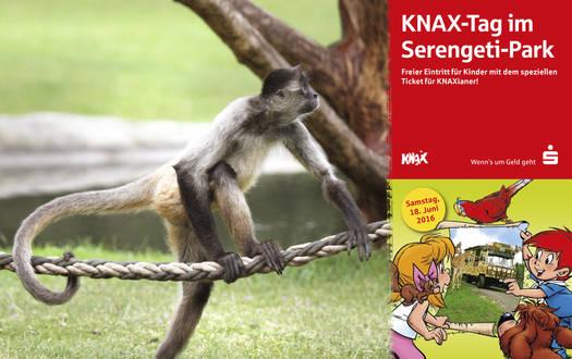 KNAX-Tag im Serengeti-Par