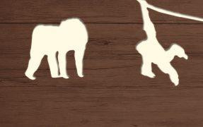 Asiatischer Dschungel im Serengeti-Park