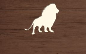 Das Wild-Areal Afrika Löwe im Serengeti-Park