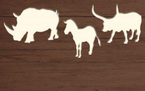 Das Wild-Areal Südliches Afrika im Serengeti-Park