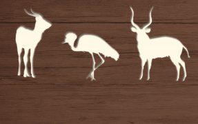 Das Wild-Areal Zentralafrika im Serengeti-Park