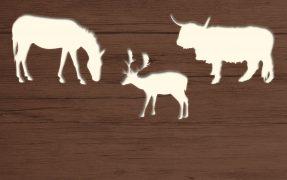 Das Wild-Areal Europa im Serengeti-Park