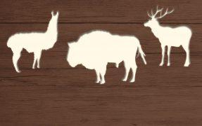 Das Wild-Areal Nordamerika im Serengeti-Park