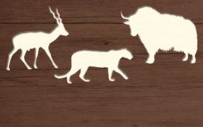 Das Wild-Areal Russland im Serengeti-Park