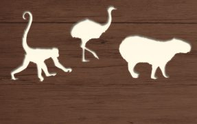 Das Wild-Areal Südamerika im Serengeti-Park