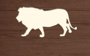 Das Wild-Areal Afrika Weißer Löwe im Serengeti-Park