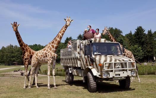 Unimog-Safari im Serengeti-Park
