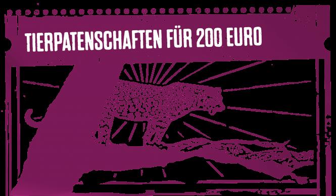 Tierpatenschaften für 200 Euro