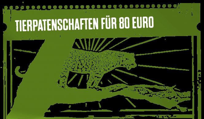Tierpatenschaften für 80 Euro