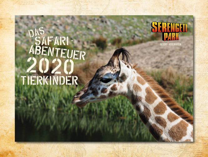 Wandkalender Tierkinder 2020